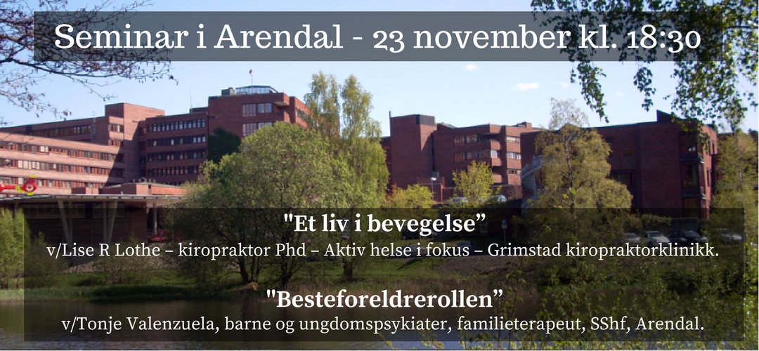 Seminar i Arendal 23 november